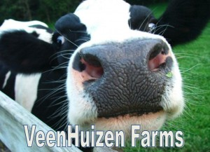 Vennhuizen Farms